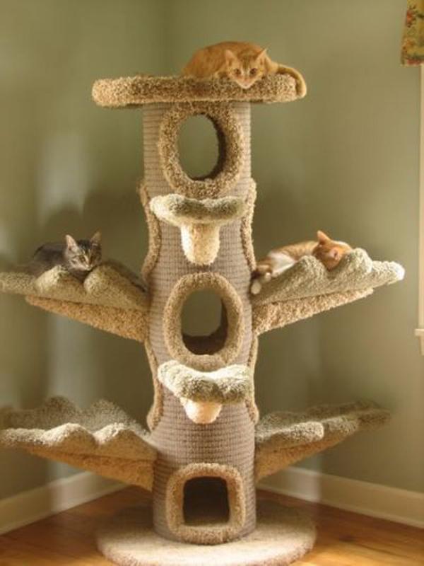 Cozy Cat Tree Furniture