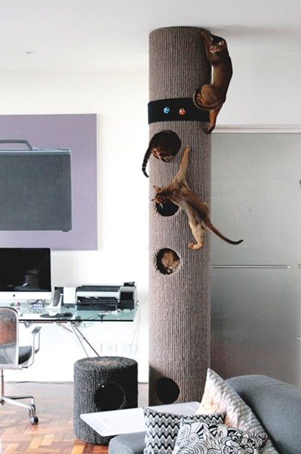 Modern Cat Tree Tower Home Design And Interior