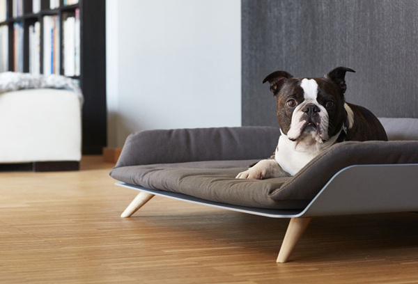 Awesome Cool Modern Dog Bed Home Design And Interior Gmtry Best Dining Table And Chair Ideas Images Gmtryco
