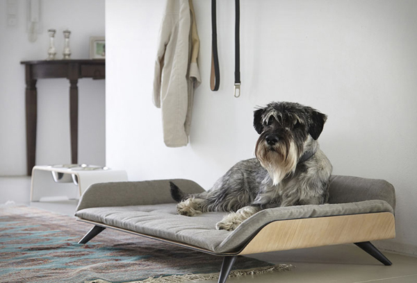 Letto Daybed Designed For Modern Dog Bed With Innovative Design And Has Been Awarded Red Dot Award 2017 Made From Aluminum Bent Either In The Paint