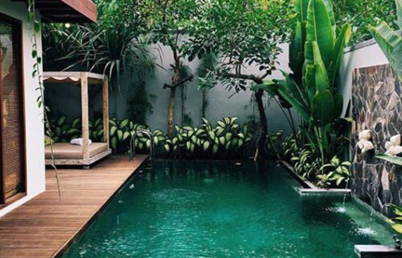 Narrow Swimming Pool Home Design And Interior