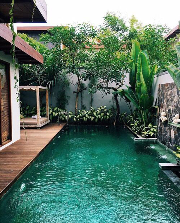 Traditional Garden With Pool: 25 Outdoor Narrow Pools For Limited Spaces