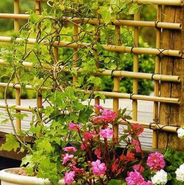 25 Unique Staircase Designs To Take Center Stage In Your Home: 25 Beautiful DIY Trellis For Small Garden