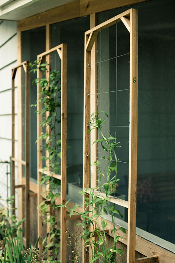 25 Beautiful Diy Trellis For Small Garden Home Design