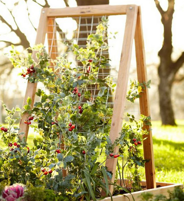 Small Garden Ideas Beautiful Renovations For Patio Or: 25 Beautiful DIY Trellis For Small Garden