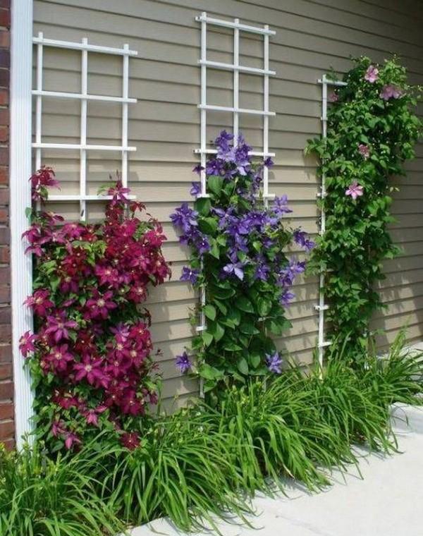 Diy Wall Garden Trellis Decor Home Design And Interior