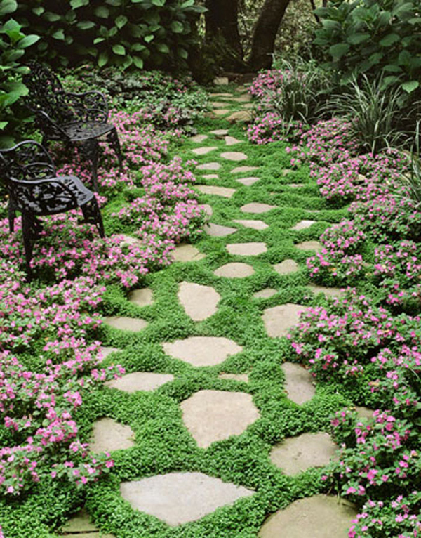 15 Beautiful Plants And Ground Cover For Garden Pathways ... on Backyard Patio Landscaping id=51417
