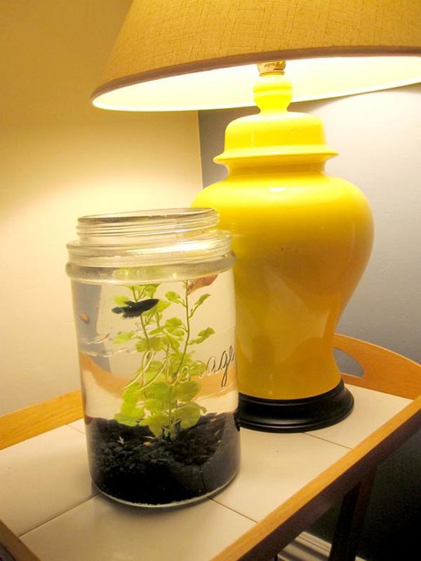 Diy Mason Jar Fish Tank In Bedroom Side Table Homemydesign