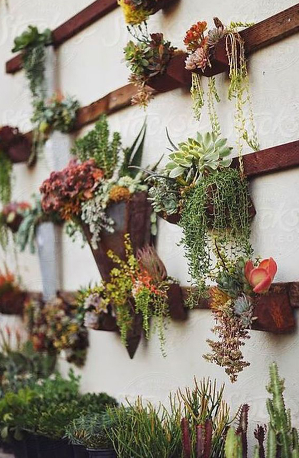 Gentil ... How Wall Art Can Be Created From Succulent Plants. Because Succulents  Have Many Types And Variations Of Plants, So You Can Easily Mix Some  Variations ...