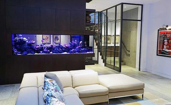 Aquarium Room Divider For Living Room And Kitchen