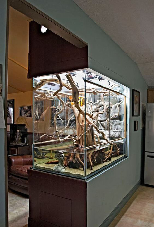 Unique Tree Aquarium Design For Room Dividers Home Design