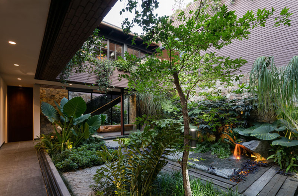 Indoor Garden In Mexico House