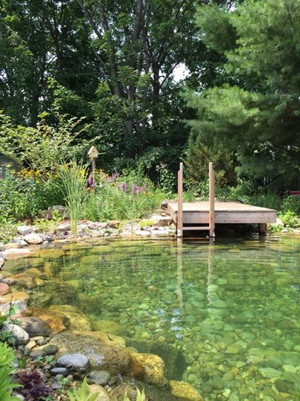 natural-pool-and-dock-design I Want A Swimming Pool In My Backyard on