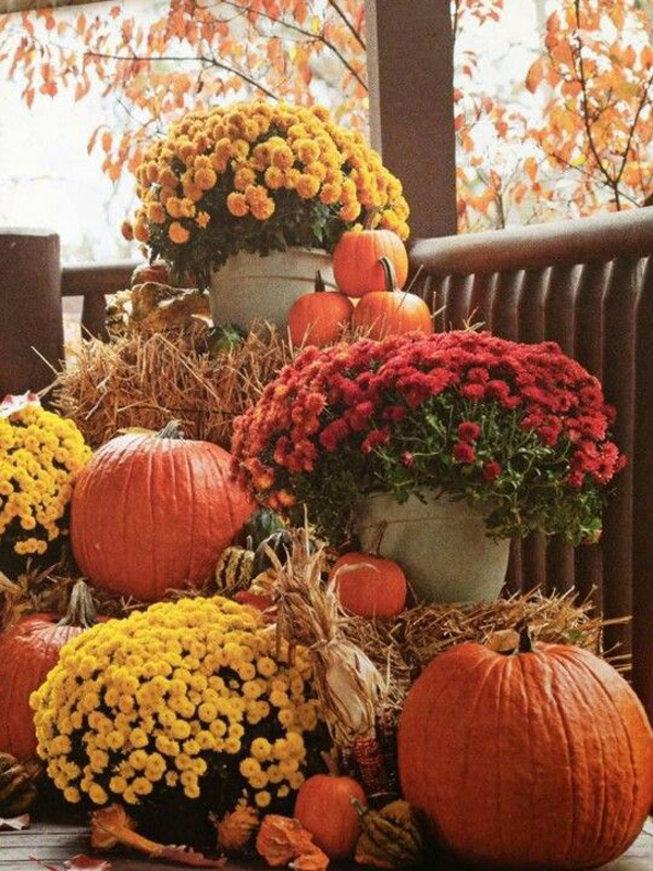 Pretty Outdoor Fall Flower Decor For Your Patio Homemydesign