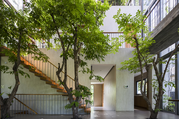 Stepping Park House Staircase With Indoor Trees Homemydesign