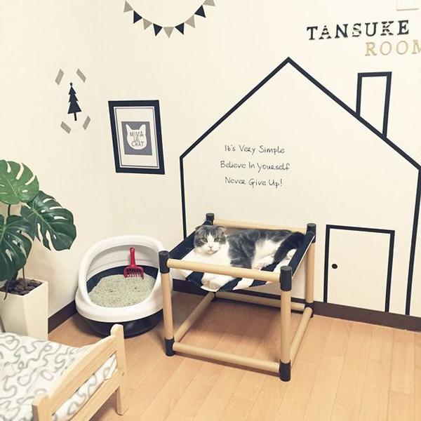 Cute Cat Room Decor Leadersrooms