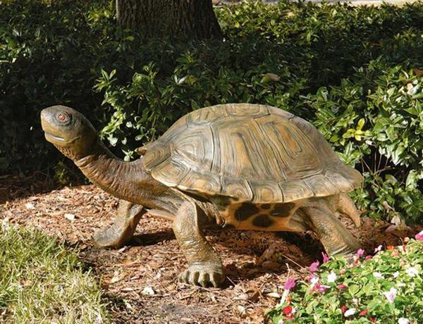 Tortoise Garden Statue Ideas Homemydesign