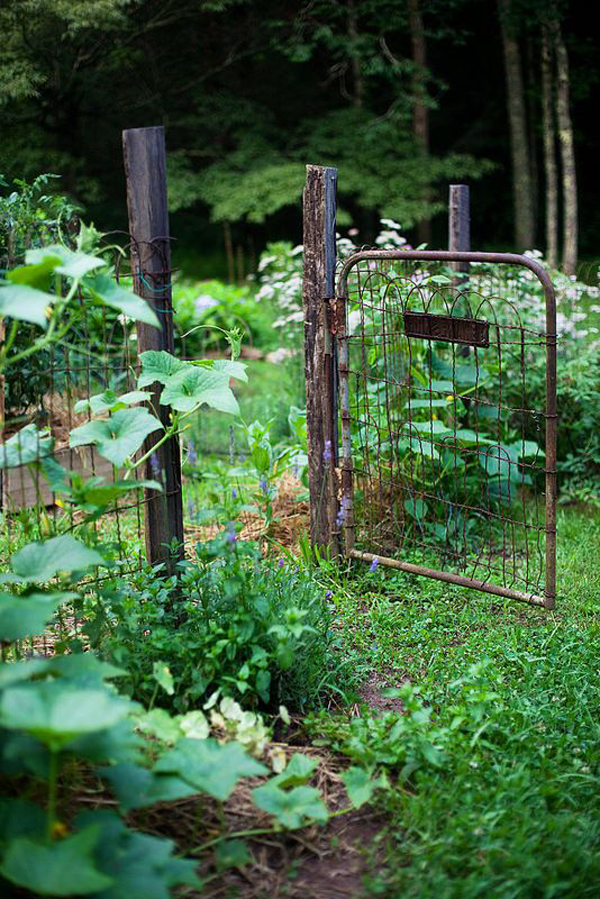 25 Rustic Fencing Ideas To Make Sure Your Garden Safe ... on Backyard Fence Landscaping Ideas id=79633