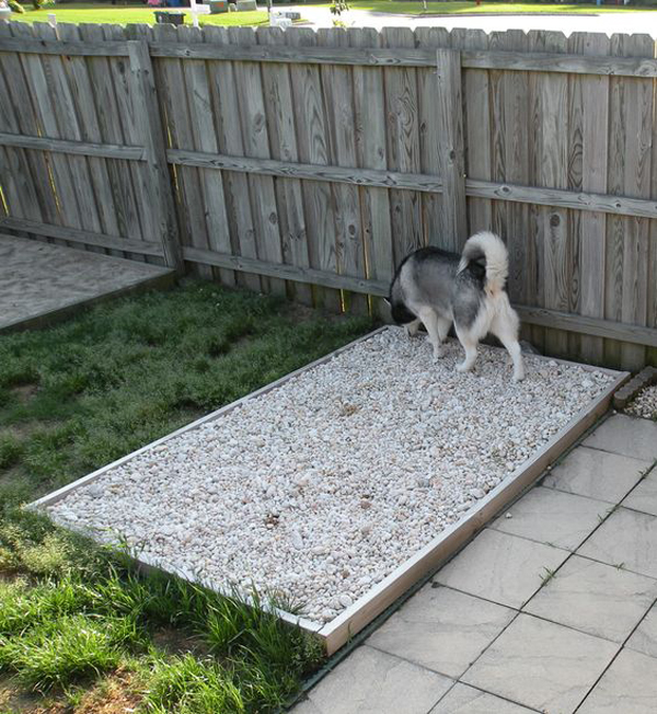 20 Creative DIY Dog Playground In The Backyard | HomeMydesign