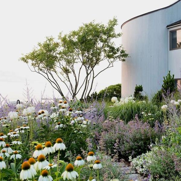 20 Gorgeous Coastal Gardens Like A Paradise Homemydesign