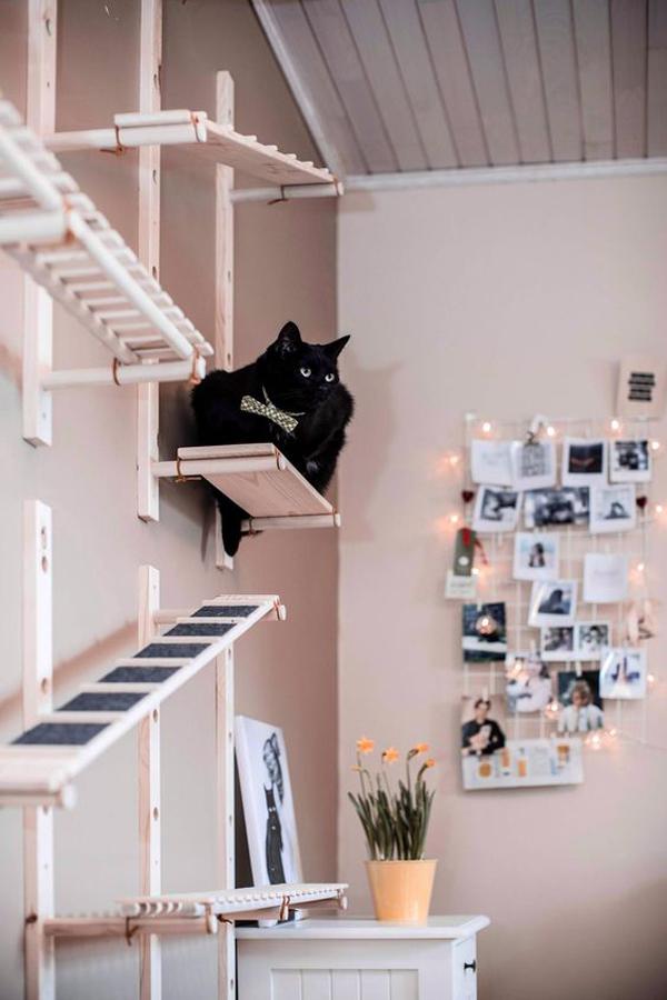 30 Modern Diy Cat Playground Ideas In Your Interior Homemydesign