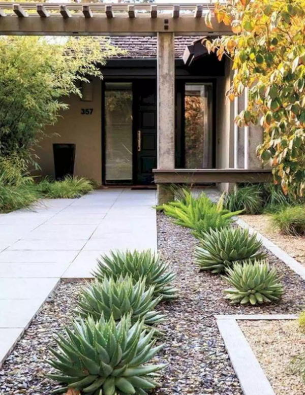Modern Front Yard Landscaping With Desert Plants Homemydesign