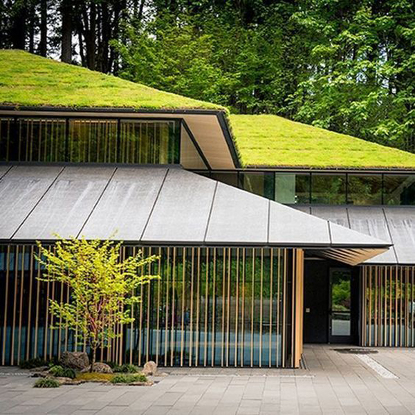 Modern Japanese House With Green Roof Designs Homemydesign