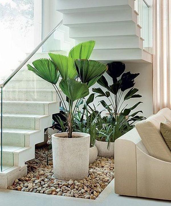 Minimalist Indoor Garden Ideas In Understairs Homemydesign