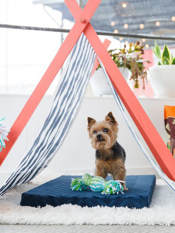 25 Dog Teepee Decor Ideas That Make Your Pet Happy