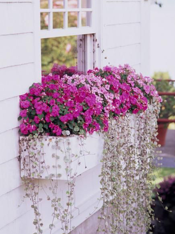 20 Window Planter Boxes For Maximize Your Outdoor Spaces