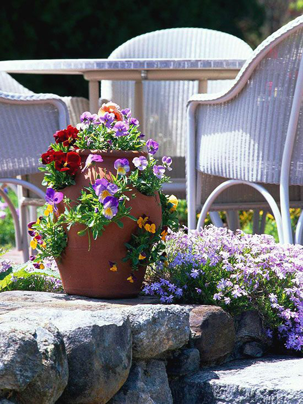43 Beautiful Container Gardens For Spring Season