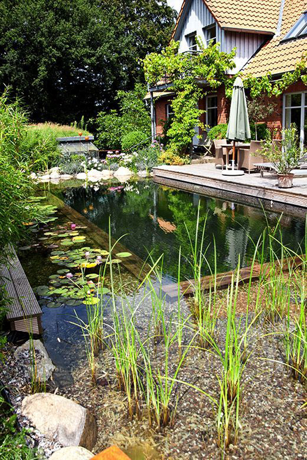 Fresh Outdoor: Best Natural Pools And Swimming Ponds In The Backyard
