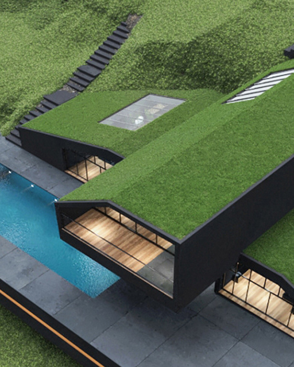Beautiful Black Villa With Grass-covered Roof