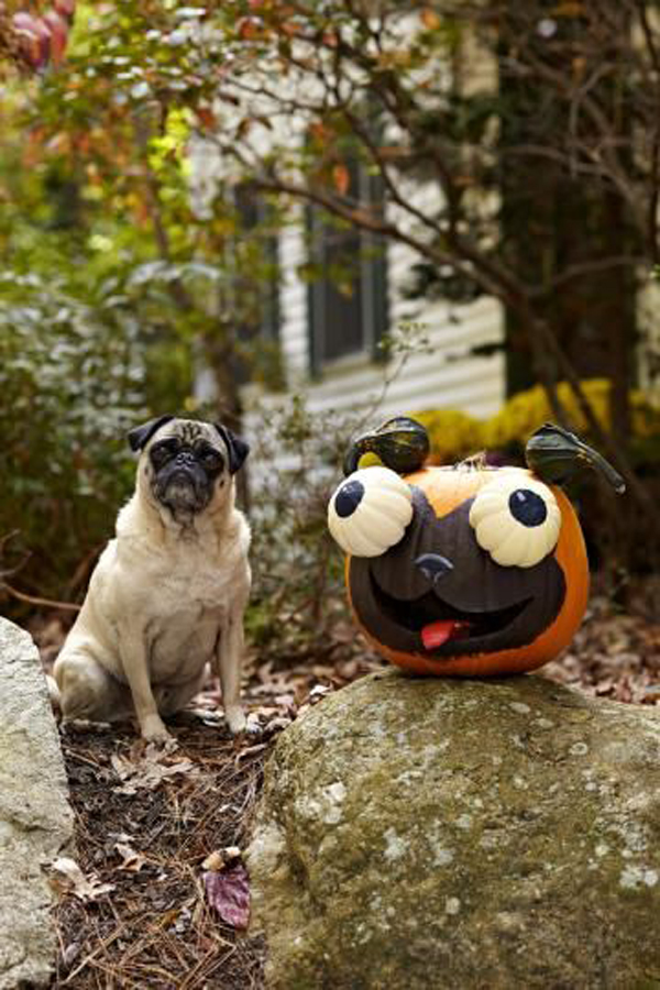 23 DIY Face Pumpkin Ideas That's Fun This Halloween