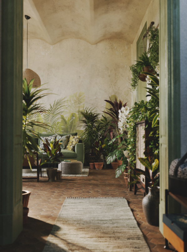 Houseplant Delight: Interior Plants With Full CGI Concept