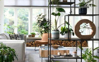 cool-plant-rack-divider-for-living-room