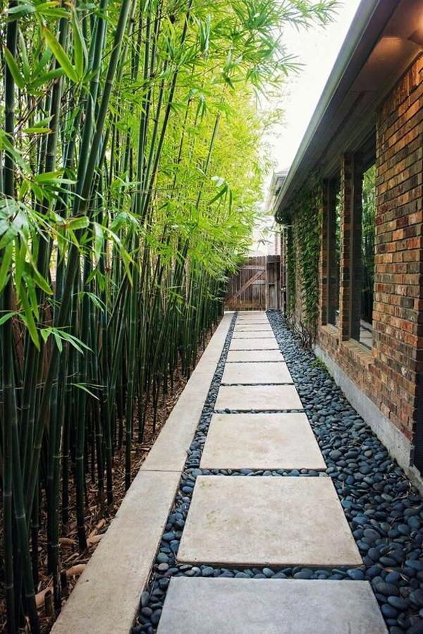 japanese-side-garden