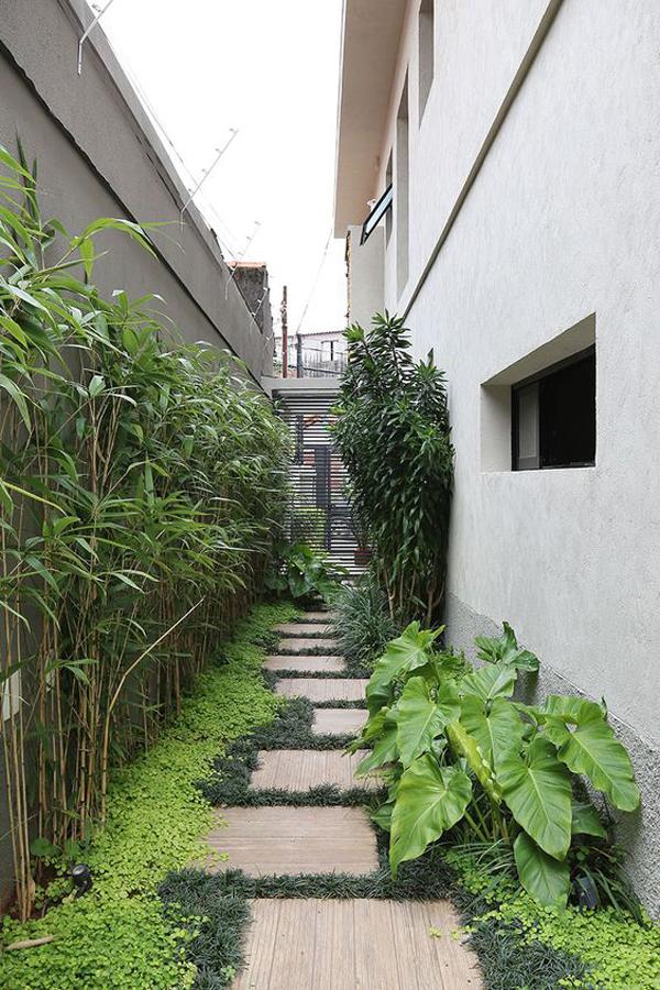 modern-side-yard