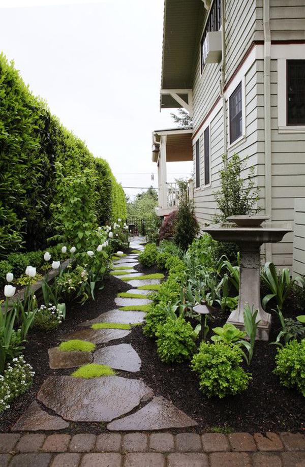 rain-side-yard