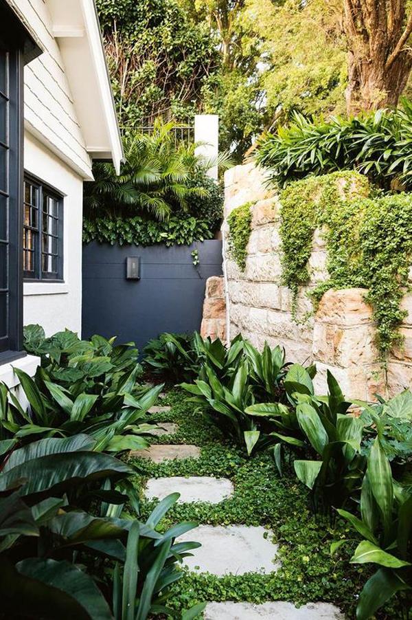 small-side-garden