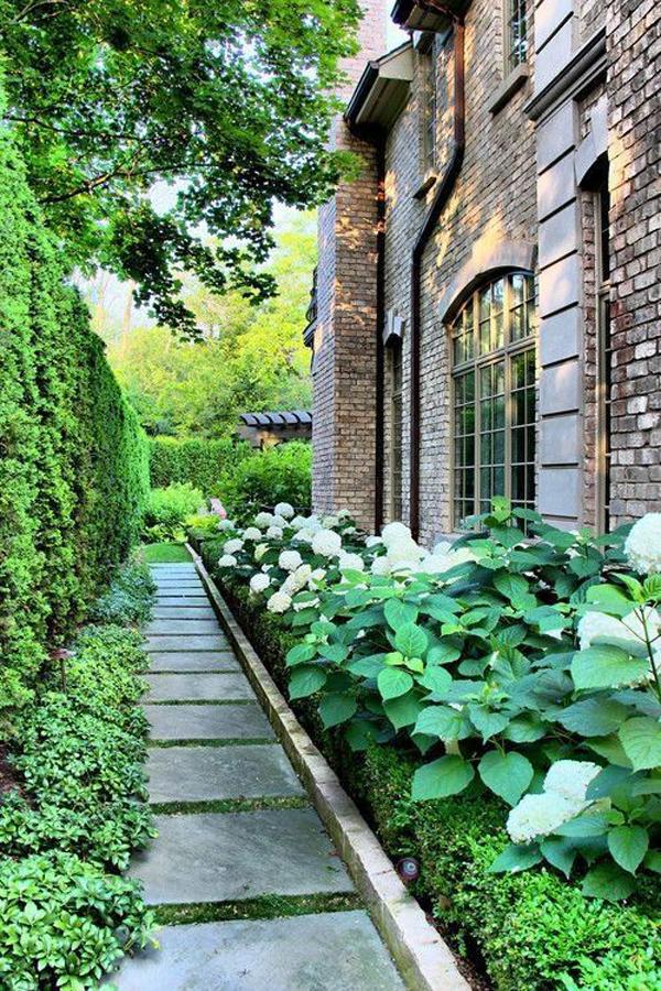 tiny-side-garden