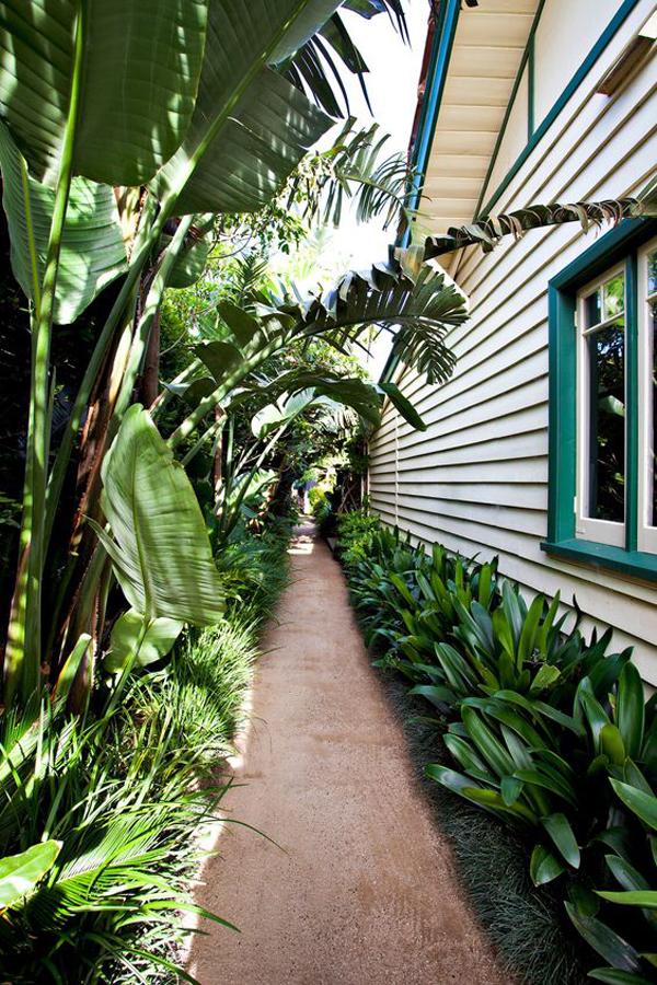 tropical-side-garden