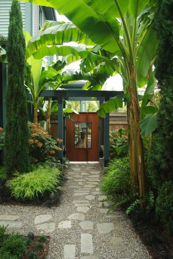 tropical-side-yard