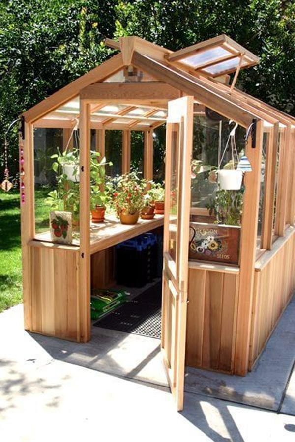 backyard-wooden-greenhouse-ideas