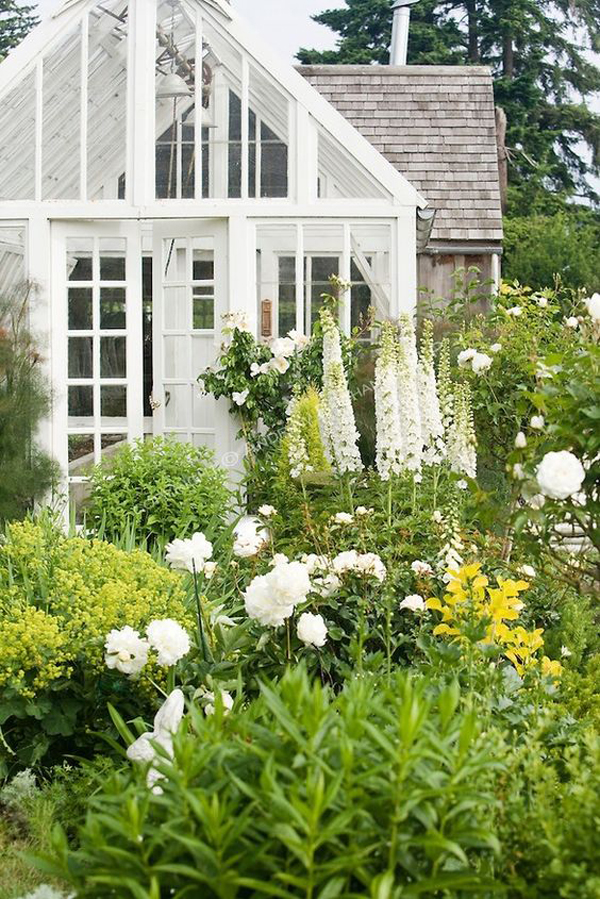 beautifully-greenhouse-garden-landscapes