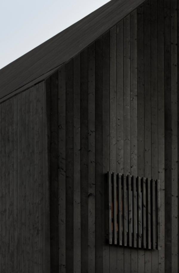 black-wood-window-design