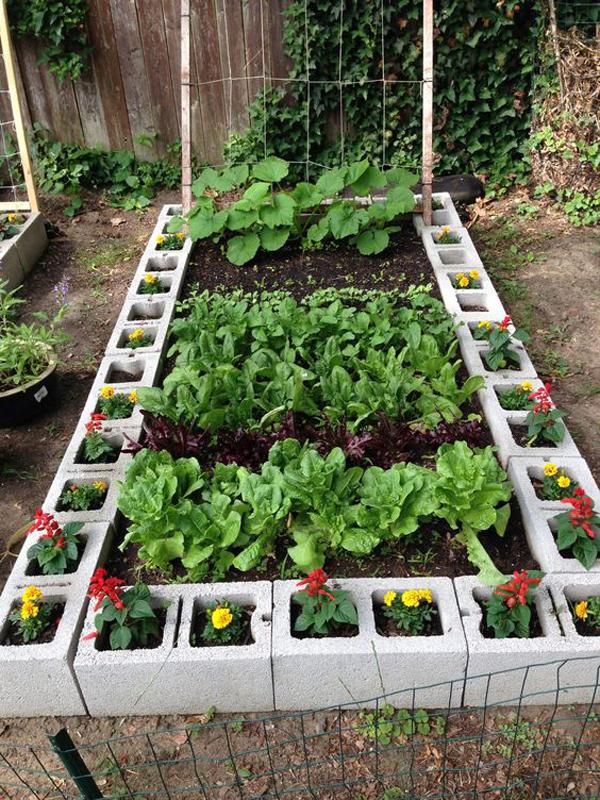 cinderblocks-raised-garden-bed