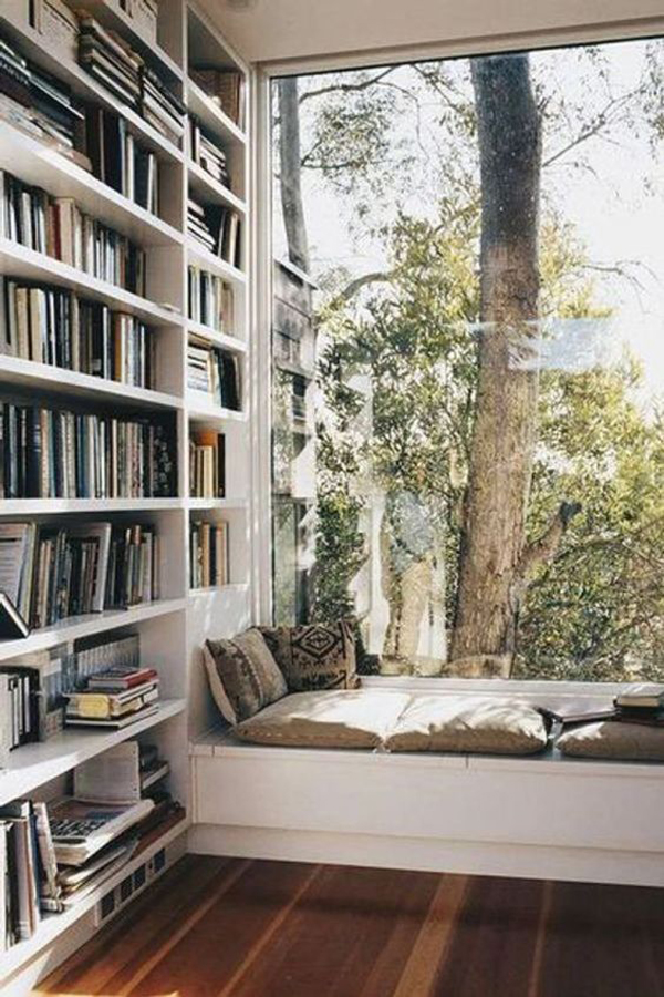 cool-bookshelf-wall-with-a-view