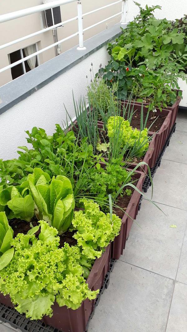 diy-container-raised-garden-bed