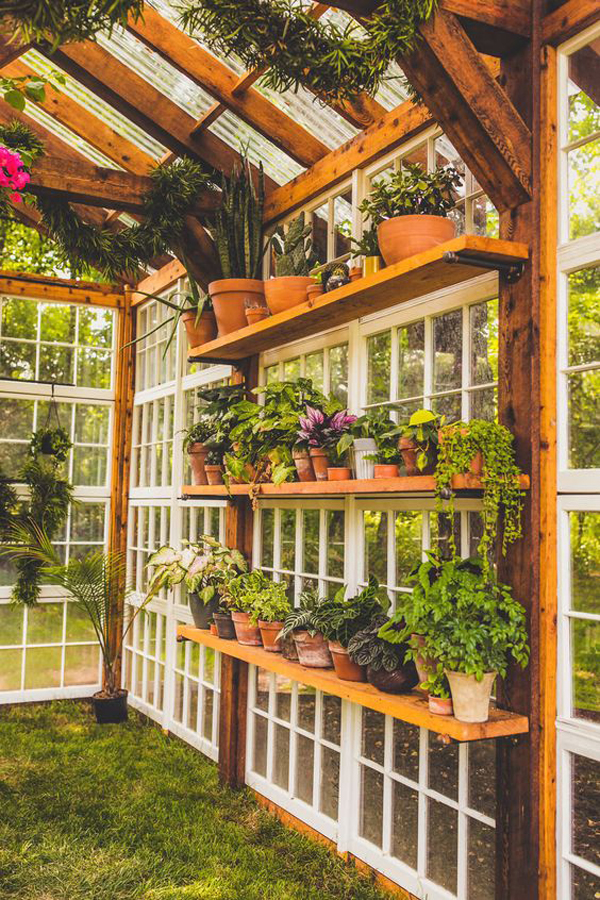 flower-greenhouse-with-wooden-rack